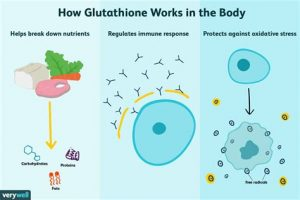 How Glutathione works in the body